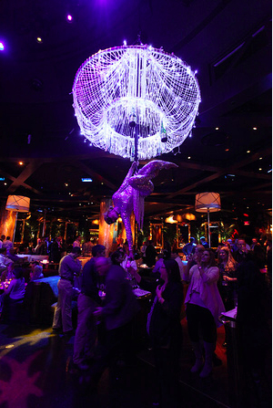 Unique Corporate Events Social Events And Weddings Ideas Aerial Bartenders Event Entertainment