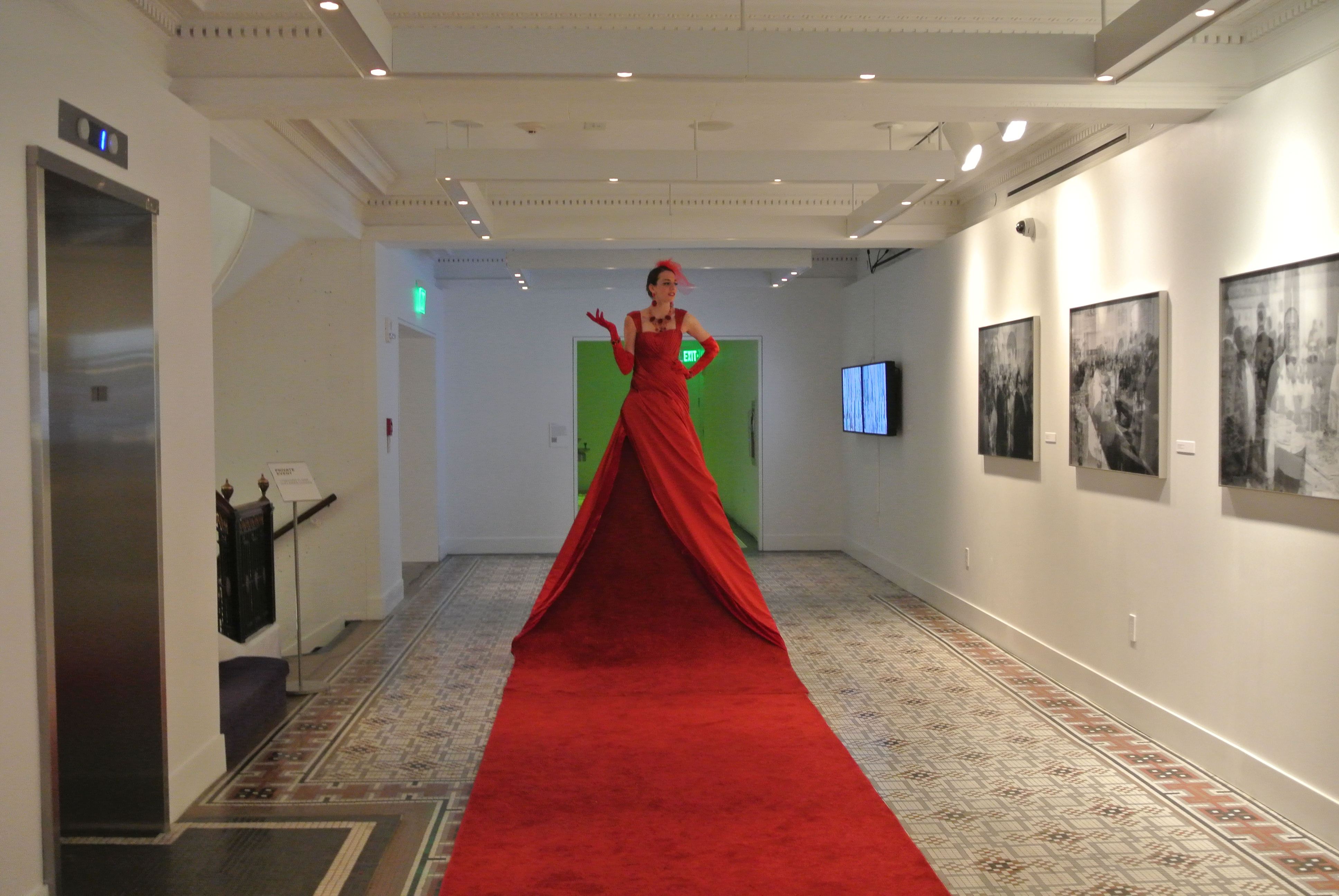 red carpet ideas-event entertainment ideas www.aerialartistry