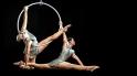 #36_aerial_lyra_duo
