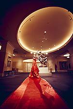 redcarpet_main_sml1