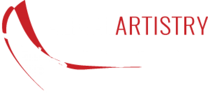 Event Entertainment Agency Aerial Artistry